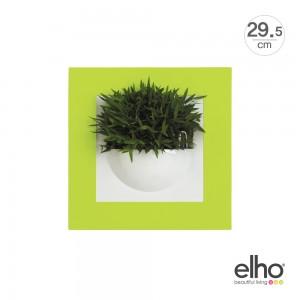 [엘호 elho] 그린갤러리 싱글 인테리어 벽걸이화분(29.5x29.5cm)