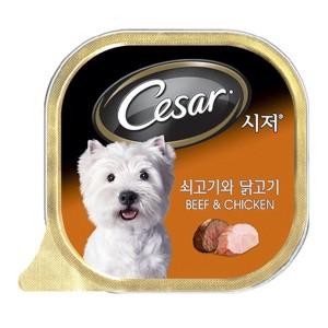 시저 쇠고기와 닭고기 캔 100g 1박스(24개) 본사정품
