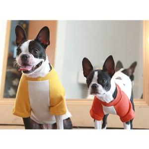 [이츠독] 오키도키 면티셔츠 3XL 강아지옷