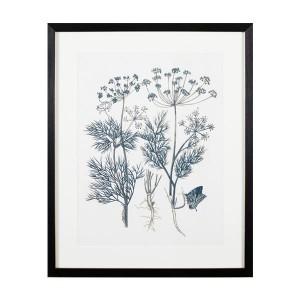 HF 유채꽃 식물도감