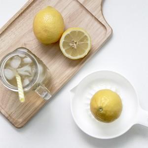 일본 이노마타 레몬스퀴저