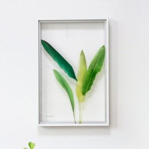 [투명액자]crystal frame-023