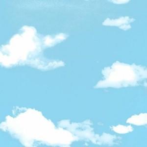 데코시트 HOL-098 구름1(15M)