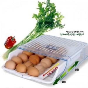 싱싱 계란 수납용기 에그통(냉장고용)