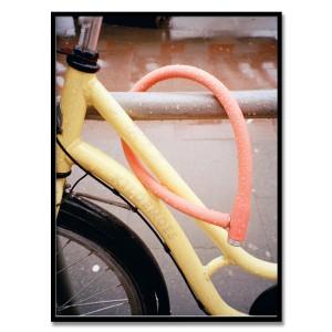 Bicycle 2017 - 김해든 작가