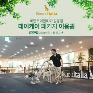 [비안코이탈리아상봉점]강아지 데이케어 Heavy_25kg이하 정규반_월별