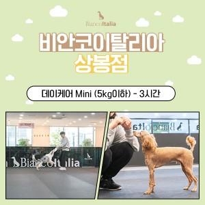 [비안코이탈리아상봉점]강아지 데이케어 Mini_5kg이하 3시간