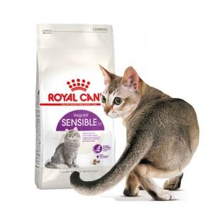 로얄캐닌 센서블 10kg 민감한 장을 위한 고양이사료