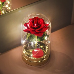 유리돔 안의 장미조명 레드 트윙클 로즈 LED 무드등